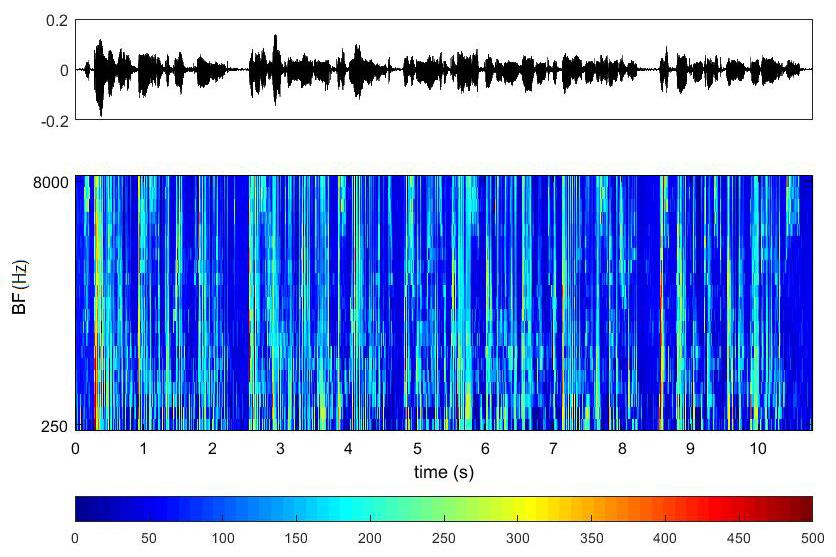 Произвольный речевой сигнал и его преобразование в реакцию слухового нерва